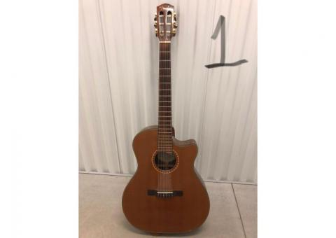 Musician's haul - 8 guitars 1 cello